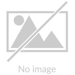 يادوراه شهداي دانش آموز فيروزآباد برگزار شد